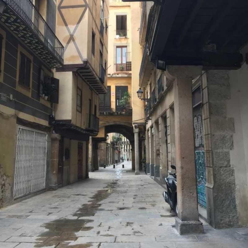 La Laia de Barcelona